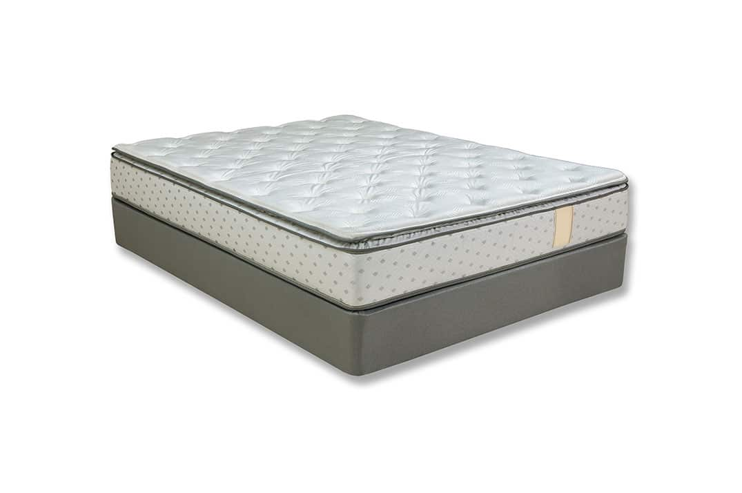Comfort Support Pt Mattress Mattress Store Nothing But Beds
