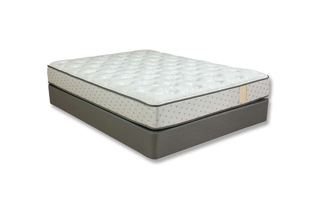 Harmony Plush Mattress Store Nothing But Beds
